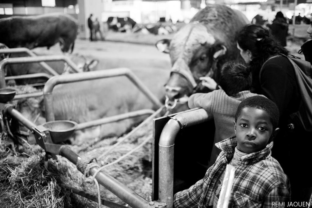 Photographe Paris - Serie People of Paris - Salon de l'agriculture - Jeune garçon intrigué
